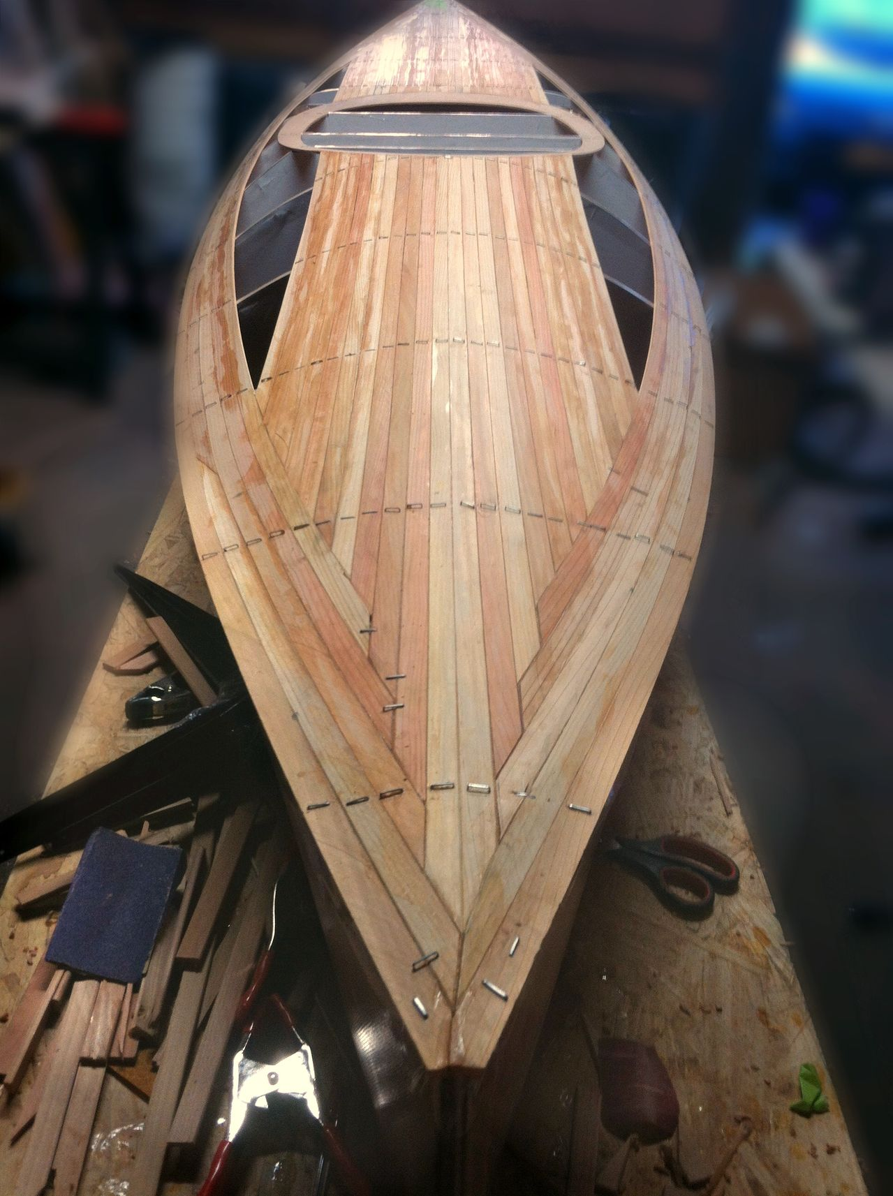 Wood Duck 12 in Progress by Peter A.