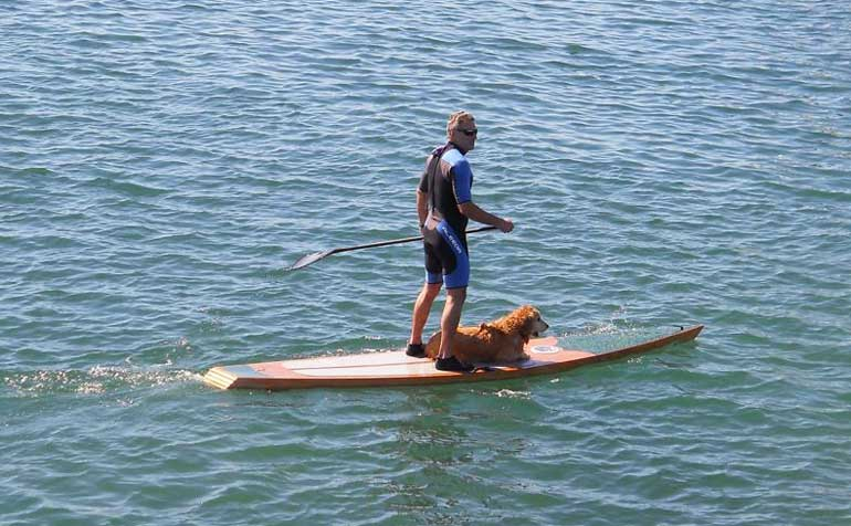 Kaholo Stand-Up Paddleboard - Build Your Own Boat