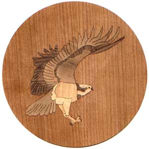 Osprey Marquetry Inlay/Onlay Kit